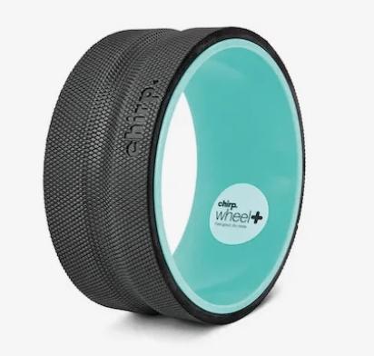 10 inch chirp wheel